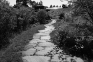 The path not yet taken…